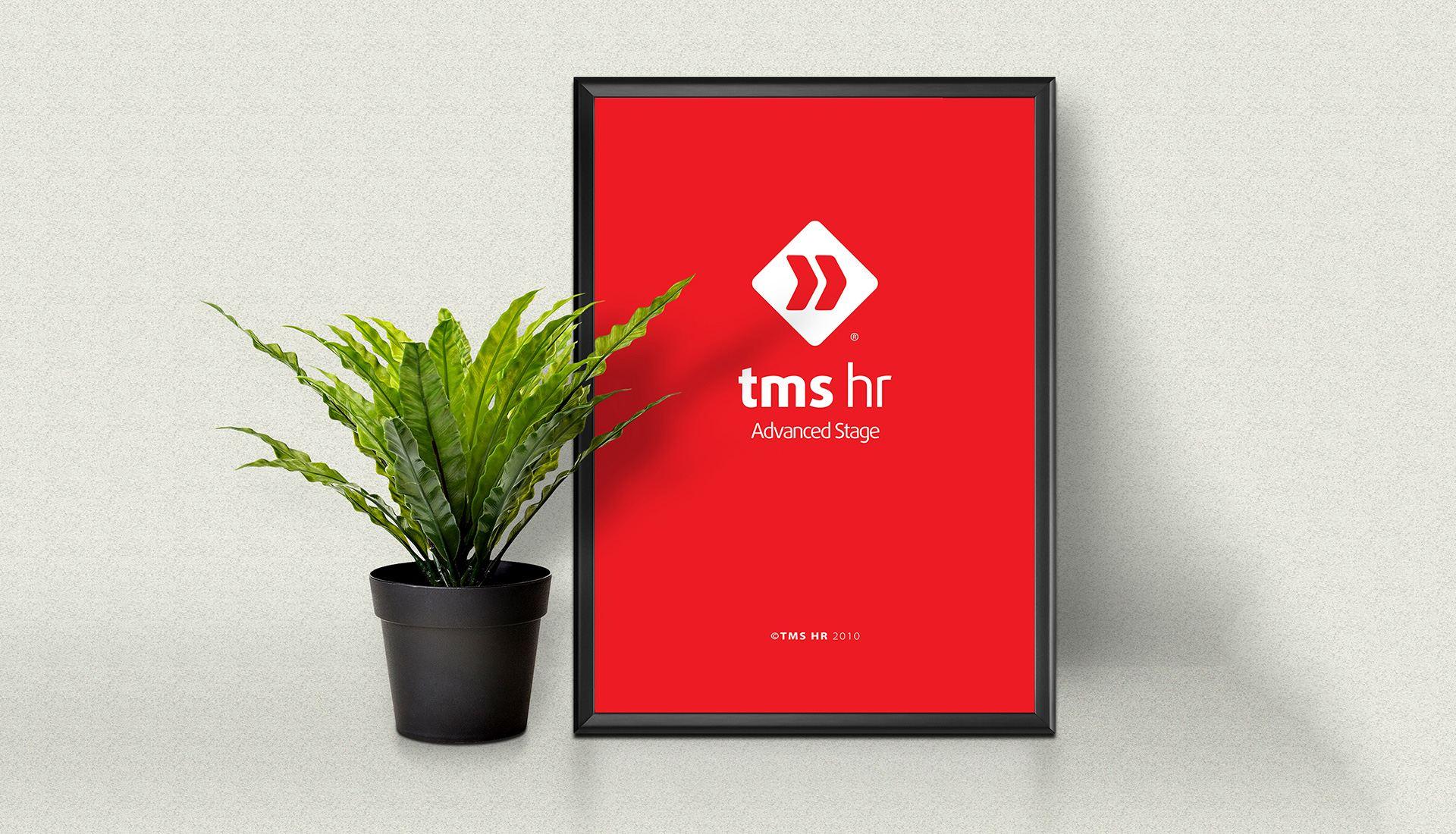 dự án thiết kế bộ nhận diện thương hiệu TMS