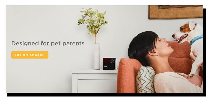 Petcube chiến dịch Pet Parents