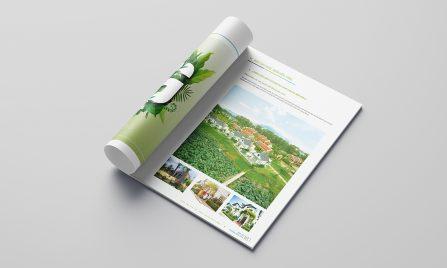 thiết kế báo cáo thường niên Thăng Long Invest Group 3